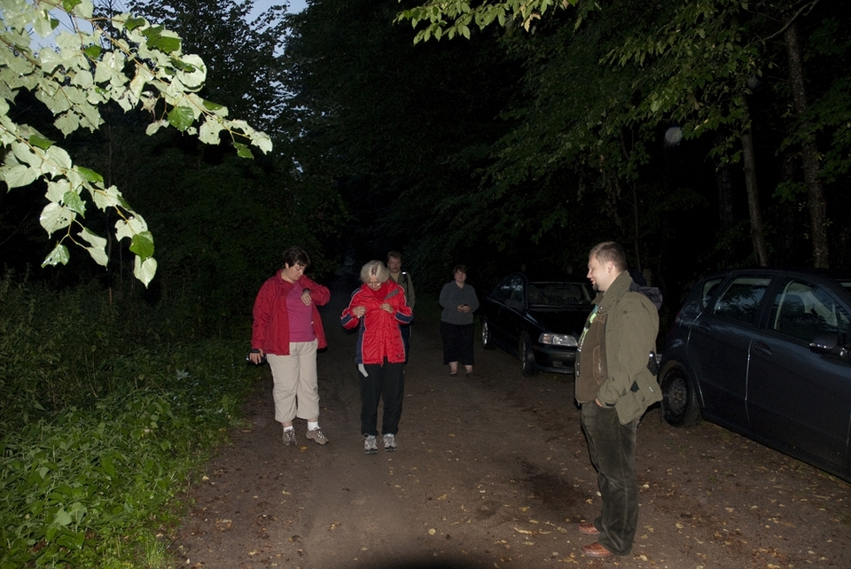 puszcza_bialowieska_obszar_ochrony_scislej_podlasie__dsc7857