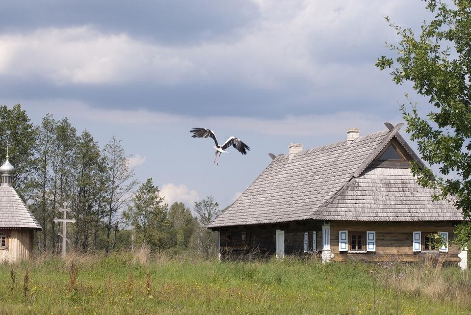 bialowieza_skansen_podlasie__dsc8968
