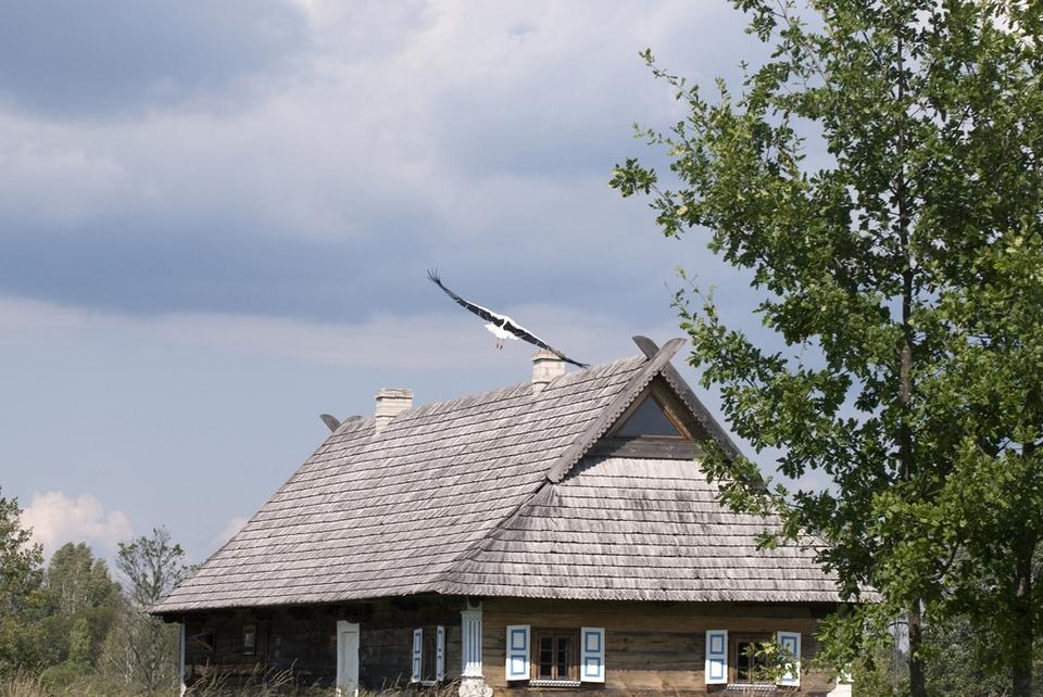 bialowieza_skansen_podlasie__dsc8969